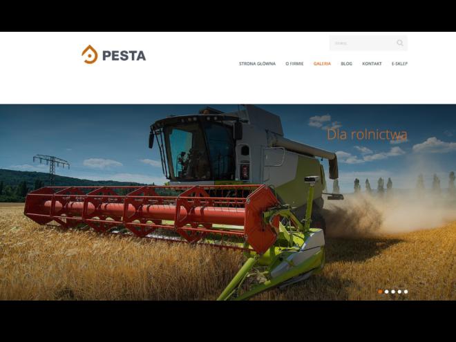 Wdrożenie strony internetowej PESTA2 Stargard